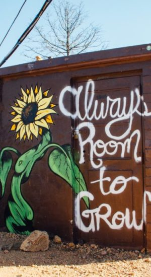"""The small building with sunflower and the quote""""Always room togrow"""""""