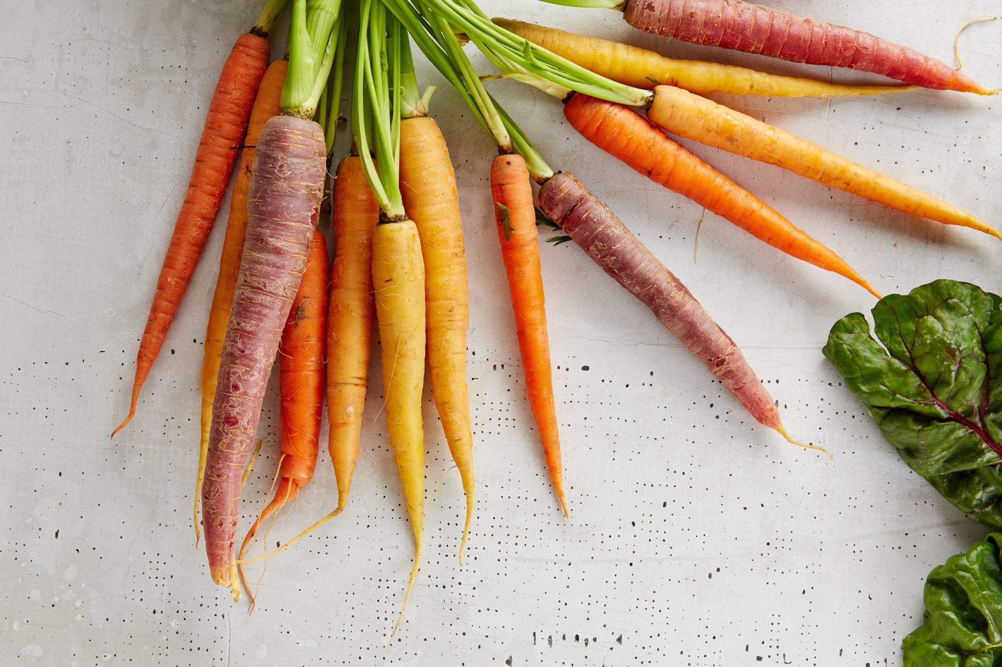 Bid data Carrots picture